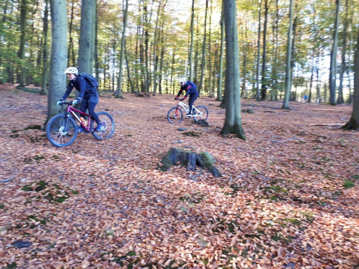 bikeschule-sauerland-tourentag-2018-fotos-mtb-guides-25
