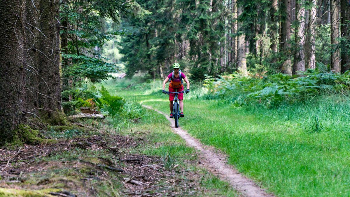 bikeschule-sauerland-bad-orb-08-2018-3