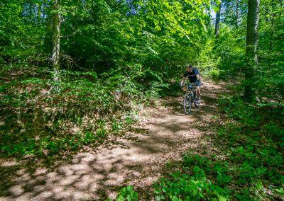 bikeschule-sauerland-vater-sohn-mountainbike-camp-mtb-05-2019-108