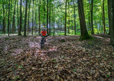 bikeschule-sauerland-vater-sohn-mountainbike-camp-mtb-05-2019-53