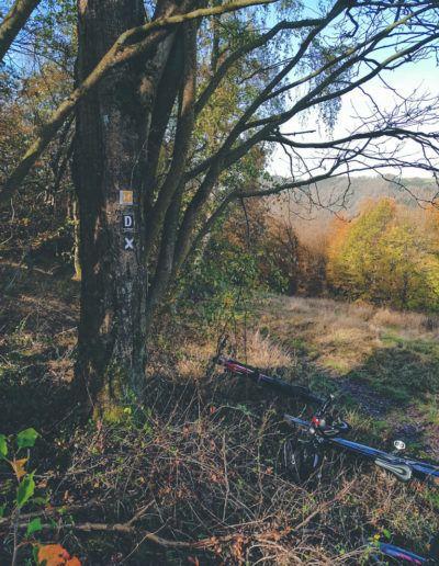 bikeschule-sauerland-tourentag-2019-226