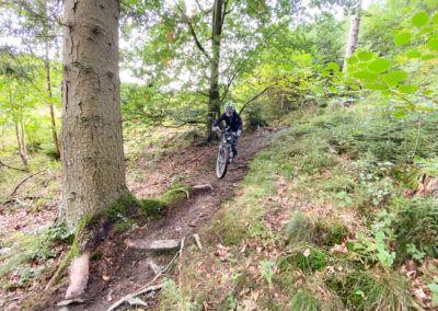 bikeschule-sauerland-vater-sohn-mountainbike-camp-092019-126