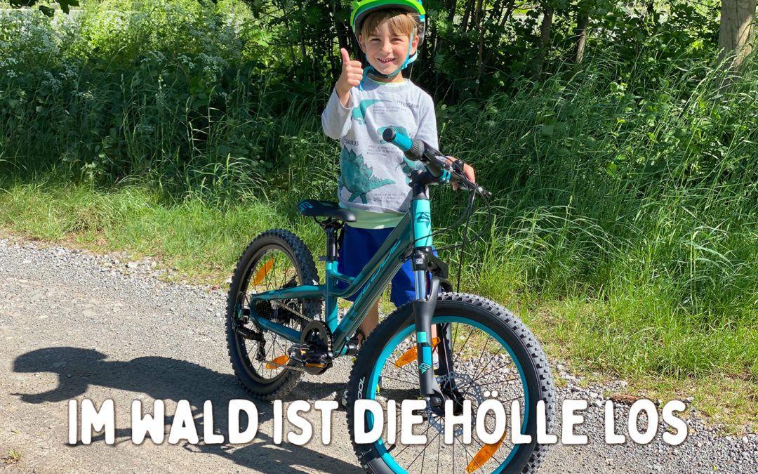 Im Wald ist die Hölle los – (nicht nur) aktuelle Gedanken rund um das Thema Mountainbiken zum Weltfahrradtag 2020